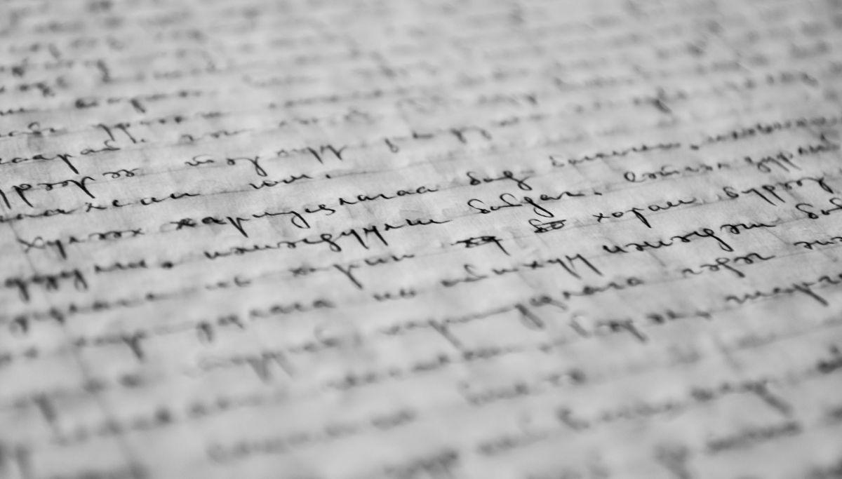carta de motivacion para maestria en nueva zelanda